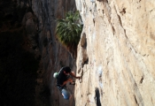 Juan getting in some sports action on Habenero 5.12b, Outrage Wall.